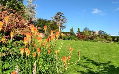 A visit to Monteviot Gardens